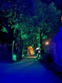Laser Entertainment Villa Rufolo